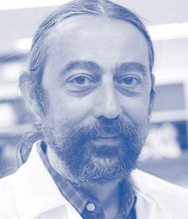 Dr. Adolfo García-Sastre